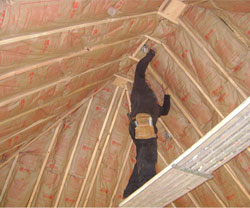 Southwest Insulation Services